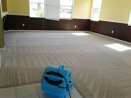 Carpet Stain Removal Indooroopilly - Hot Water Extraction and Shampoo Cleaning