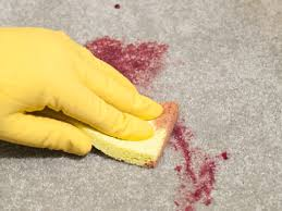 Carpet Stain Removal Kenmore - How To Clean Carpet Stains Effectively