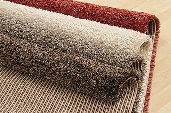 Carpet Stain Removal Leichhardt - Understanding the Difference of Expert Carpet Cleaning and DIY