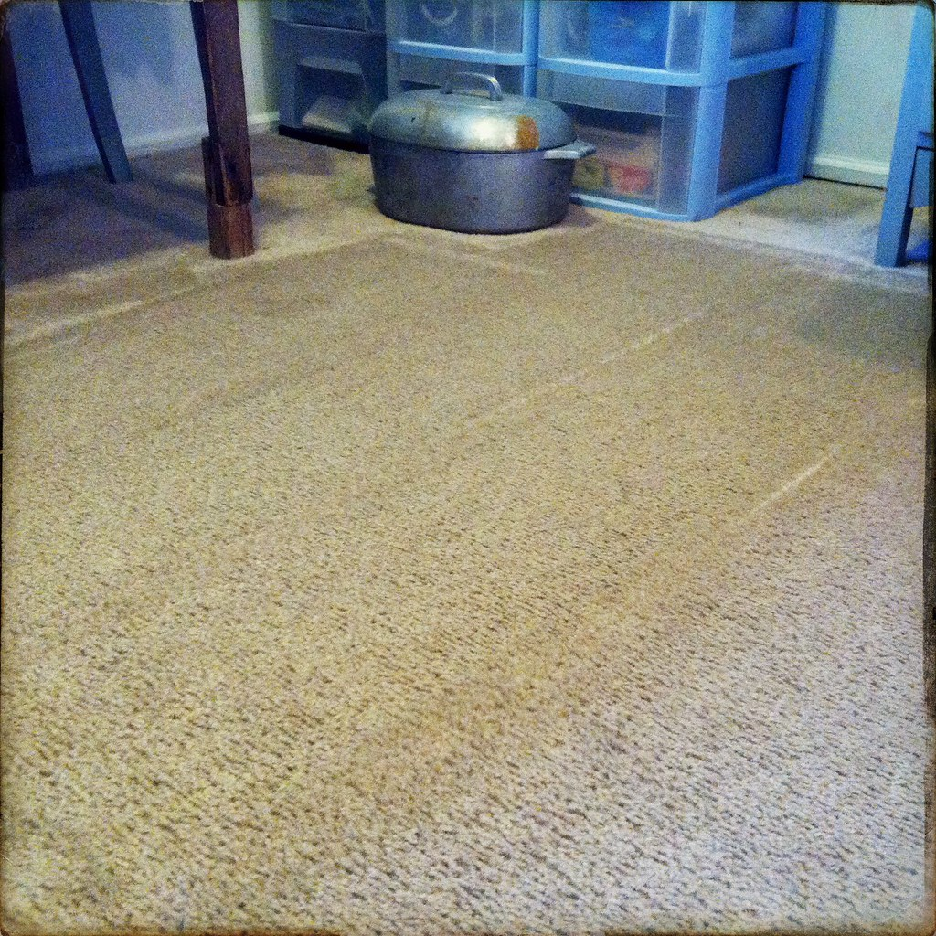 Carpet Cleaning Companies In Ebbw Vale - Basic Steps To Clean Carpet Like a Pro